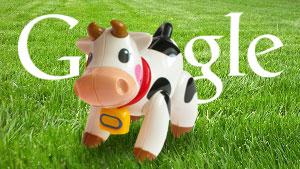 google cow